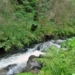 Friss források, fecsegő patakok, nyugalmas tavak